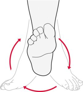 ankle-rotation
