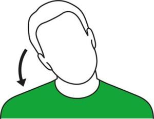 Head tilt (side-to-side)