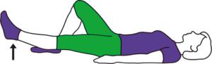 Straight-leg raise (lying)