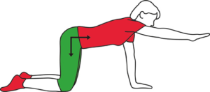 Back stabiliser